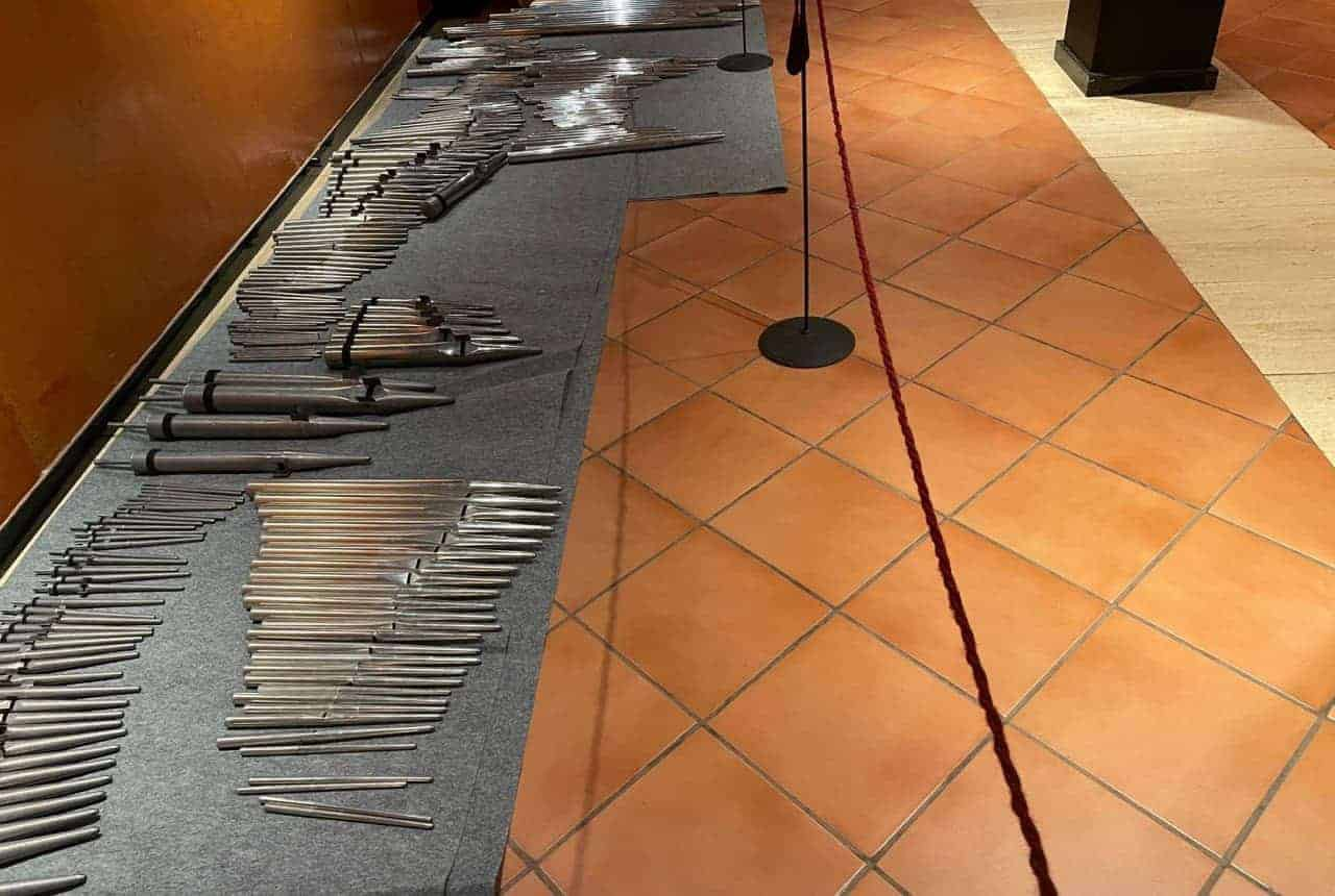 órgano